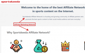 Sports Affiliate Marketing example